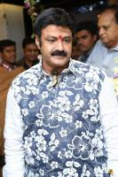 Balakrishna at Mirrors Launch (2)