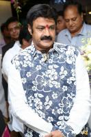 Balakrishna at Mirrors Launch (5)