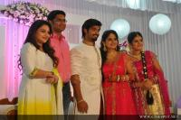 Sruthi Lakshmi Marriage Reception Photos
