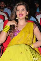 Hamsa Nandini at Soggade Chinni Nayana Audio Launch (9)