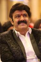 Balakrishna at Dictator Success Meet (8)