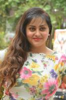 Namitha at Pottu Movie Launch (8)