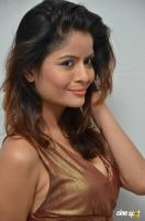 Gehana Vasisth at Btech Love Story Audio Launch (66)