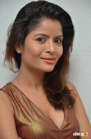 Gehana Vasisth at Btech Love Story Audio Launch (70)
