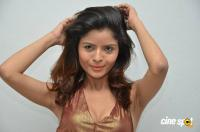 Gehana Vasisth at Btech Love Story Audio Launch (93)
