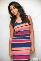 Gayathri Iyer at Tyson Press Meet (1)