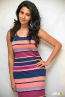 Gayathri Iyer at Tyson Press Meet (2)