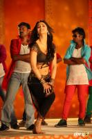 Yevanda Actress Shruti Haasan (10)