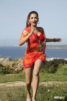 Yevanda Actress Shruti Haasan (14)