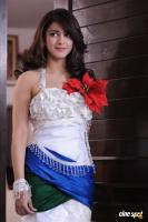 Yevanda Actress Shruti Haasan (23)