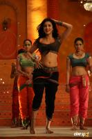 Yevanda Actress Shruti Haasan (8)