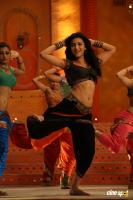 Yevanda Actress Shruti Haasan (9)