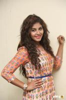 Anjali at Mapla Singam Movie Team Interview (10)