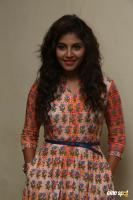 Anjali at Mapla Singam Movie Team Interview (7)