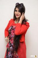 Neha Saxena at Dandu Audio Launch (2)