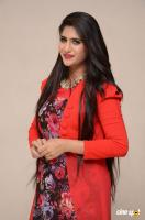 Neha Saxena at Dandu Audio Launch (38)