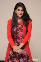 Neha Saxena at Dandu Audio Launch (39)