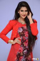 Neha Saxena at Dandu Audio Launch (43)