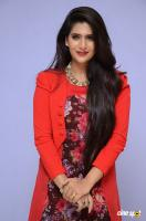 Neha Saxena at Dandu Audio Launch (44)