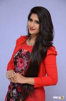 Neha Saxena at Dandu Audio Launch (46)