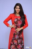 Neha Saxena at Dandu Audio Launch (48)