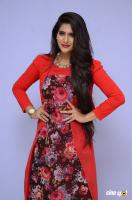 Neha Saxena at Dandu Audio Launch (49)