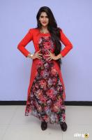 Neha Saxena at Dandu Audio Launch (52)