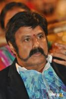 NBK at Raja Cheyyi Vesthe Audio Launch (10)