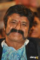 NBK at Raja Cheyyi Vesthe Audio Launch (8)