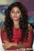 Anjali at Iraivi Movie Press Meet (3)