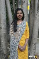 Riythvika at Enakku Veru Engum Kilaigal Kidaiyathu Audio Launch (9)