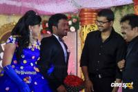 Pandiarajan Son Prithvi Rajan Marriage Reception Photos