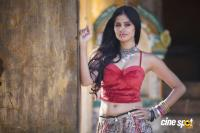 Shalini Vadnikatti Photo Shoot Images (12)