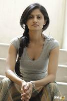 Shalini Vadnikatti Photo Shoot Images (21)