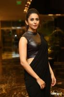 Rakul at Rayudu Movie Audio Launch (63)