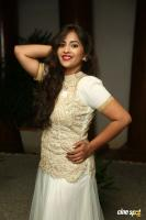 Komali at Nenu Seetha Devi Audio Launch (4)