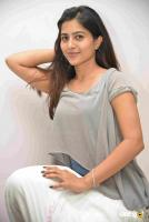 Apoorva Film Press Meet (16)