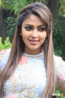 Amala Paul at Amma Kanakku Press Meet (3)