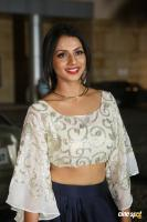 Sruthi Hariharan at Filmfare Awards 2016 (13)