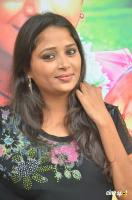 Jothisha at Egnapuram Movie Audio Launch (12)