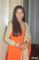 Riythvika at Kabali Success Press Meet (4)