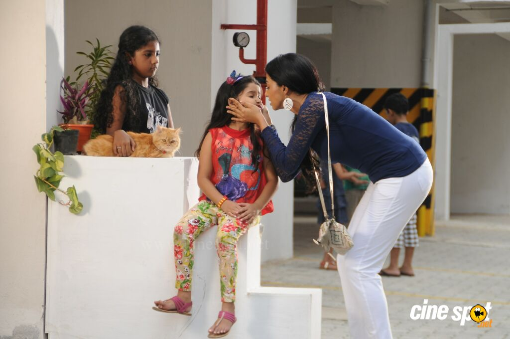Meow Movie Stills (3)
