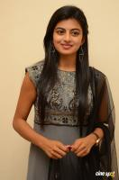 Rakshita at Tholi Premalo Platinum Disc Function (26)