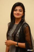 Rakshita at Tholi Premalo Platinum Disc Function (31)