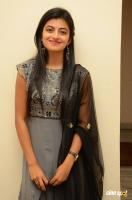 Rakshita at Tholi Premalo Platinum Disc Function (32)