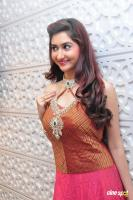 Harshada Patil at Manepally Exclusive Diamond Collection (6)