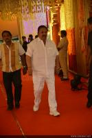 Businessman Nimmagadda Prasad Daughter wedding photos (122)