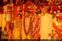 Businessman Nimmagadda Prasad Daughter wedding photos (13)