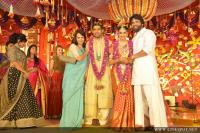 Businessman Nimmagadda Prasad Daughter wedding photos (3)