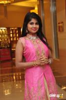 Aanya at UE The Jewellery Expo Press Meet (10)